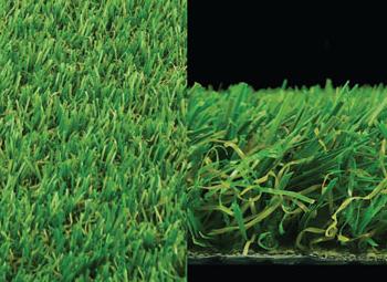 Oak Grass
