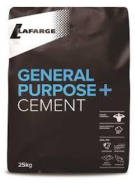 Cement (Plastic Bag)